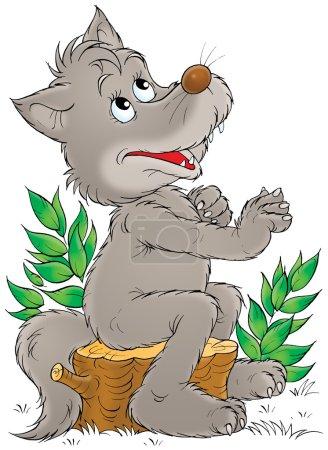 Photo pour Joyeux loup gris assis sur un tronc d'arbre et regardant vers le haut, comme s'il priait, sur un fond blanc . - image libre de droit