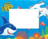 Ryby a žralok rám