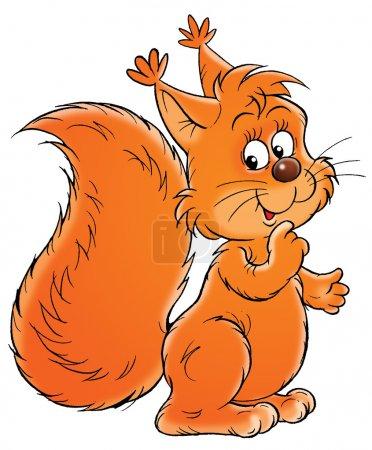 Friendly bushy tailed orange squirrel