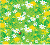 Field flowers and ladybug vector background