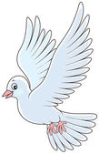 White pigeon flying vector illustration on a white background