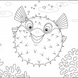 Puffer swimming on a coral reef in a tropical sea...