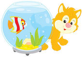 Little red kitten walking around an aquarium with a striped tropical fish