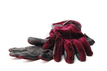 Gloves on white