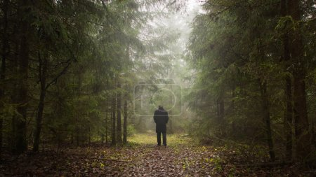 Man in a misty forest