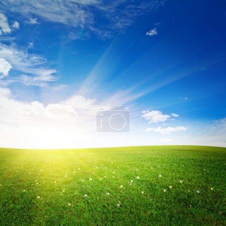 Foto de Colinas con amanecer flores. buen tiempo de verano - Imagen libre de derechos