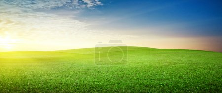 Photo for Panoramic meadow. Summer good weather - Royalty Free Image