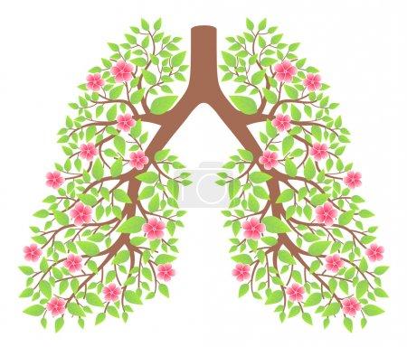 Illustration pour Poumons sains - image libre de droit