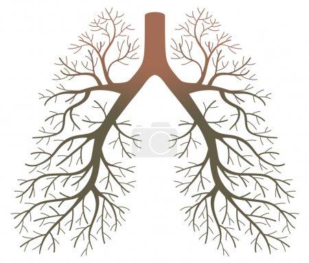 lung patients