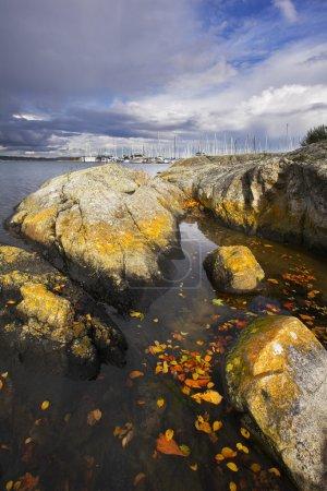 Photo pour Pierres côtières pittoresques sur la côte du passage de l'océan, des mousses envahies et des voiliers - image libre de droit