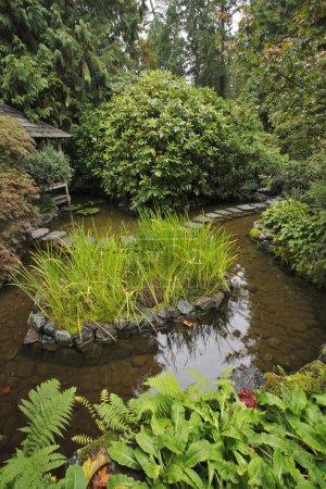Decorative Japanese garden.