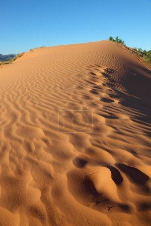 Photo pour Tôt le matin sur les dunes de sable orange. Des vagues de sable doux scintillent au soleil - image libre de droit