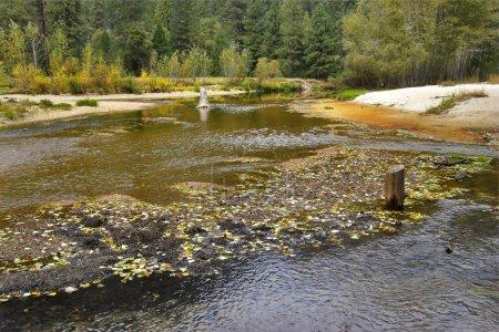 Photo pour La rivière peu profonde d'automne dans la réserve de montagne - image libre de droit