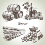 Hand drawn vector wine set...