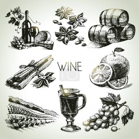 Illustration pour Ensemble de vin vectoriel dessiné à la main - image libre de droit