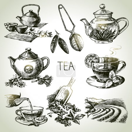 Illustration for Hand drawn sketch tea set - Royalty Free Image