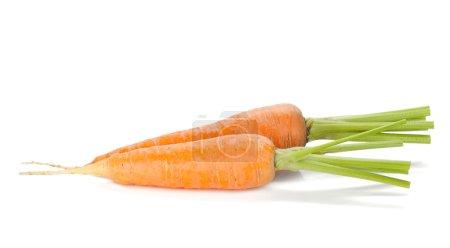Photo for Fresh ripe carrots. Isolated on white background - Royalty Free Image