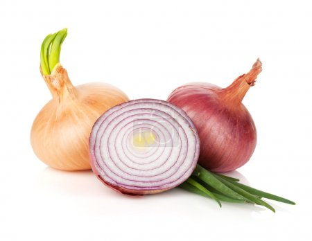 Photo for Fresh ripe onion. Isolated on white background - Royalty Free Image