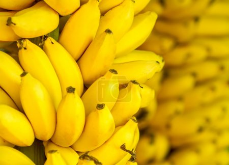 Photo for Bunch of ripe bananas background - Royalty Free Image