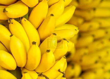 Foto de Montón de fondo de plátanos maduros - Imagen libre de derechos