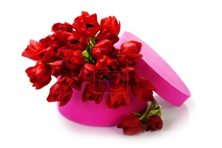 Valentine composition with red tulips