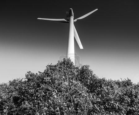 Vintage photo of a wind turbine