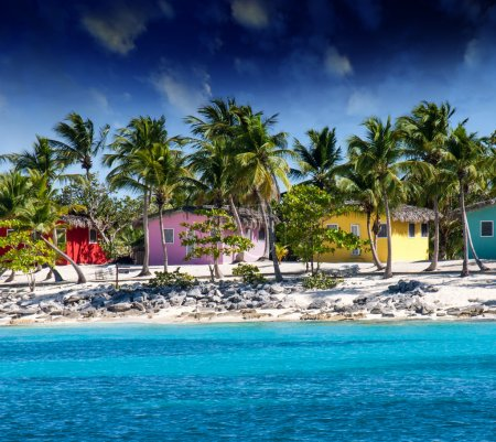 Beautiful beach of caribbean island with brilliant red, pink and