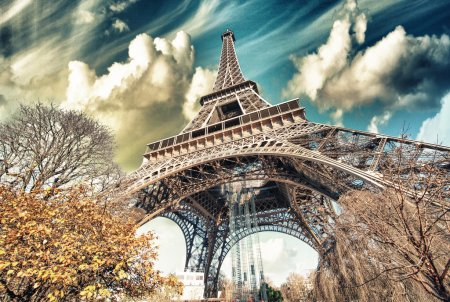 Wonderful street view of Eiffel Tower and Winter Vegetation - Paris