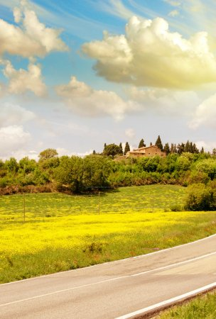 Tuscan road in Spring