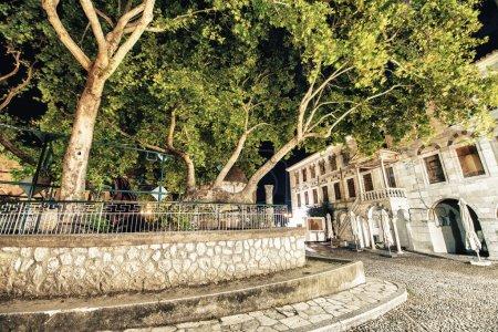 Hippocrates plane tree in Kos Island