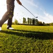 Golfer performs a golf shot from the fairway. Sunny summer day.