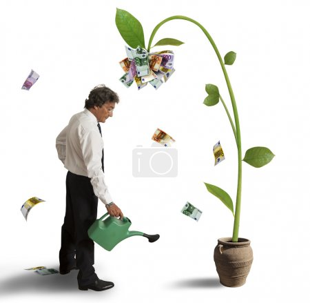 Photo for Businessman and a plant of money - Royalty Free Image
