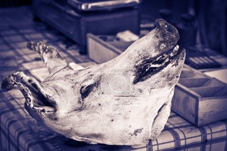 Photo pour La tête d'un porc couché sur le bureau du boucher . - image libre de droit