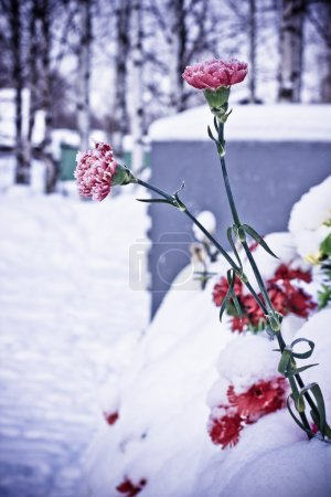 Fresh flowers on the grave