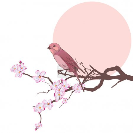 Illustration for Vector illustration of bird on the branch of cherry tree (EPS 10) - Royalty Free Image