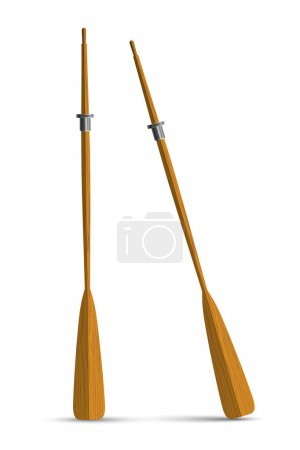 Two wooden oars