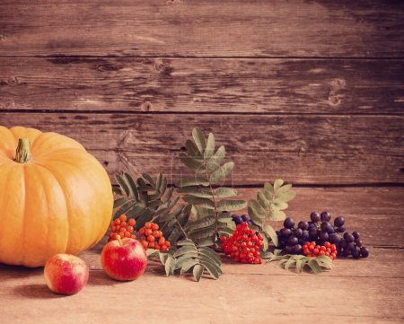 pumpkin with berries on wooden background