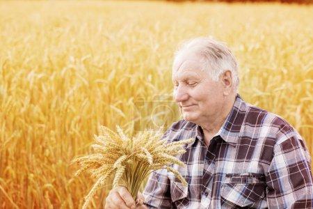 Old men standing in wheat fields