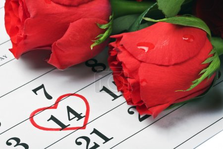 Roses lay on the calendar with the date of February 14 Valentin