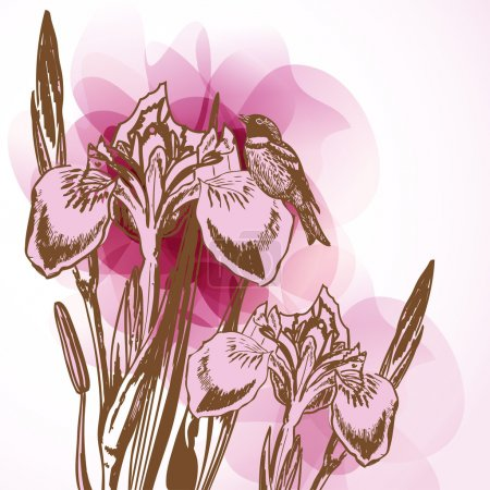 Illustration for Floral background with pink irises - Royalty Free Image