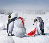 "Постер, картина, фотообои ""Херсон зима"""