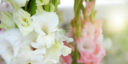 Photo for Beautiful bouquet of white gladioluses, on green background - Royalty Free Image