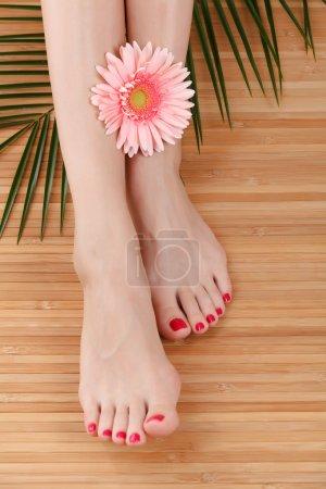 Female feet with a flower