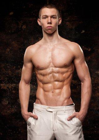 Muscular model