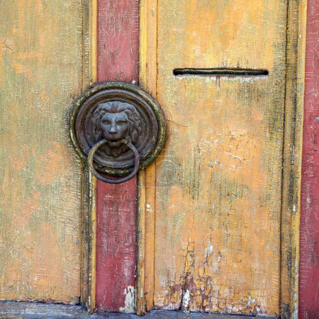 Lion head door knob.