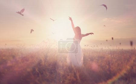 Photo for Beautiful girl in a field. flying birds on background - Royalty Free Image