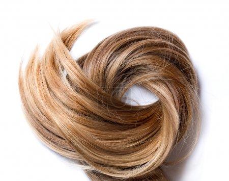 Photo pour Cheveux humains normaux sur fond blanc - image libre de droit