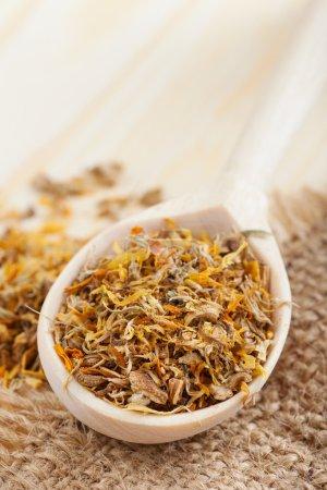Photo pour Herbes curatives dans une cuillère en bois sur table gros plan - image libre de droit