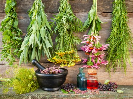 Photo for Bunches of healing herbs on wooden wall, mortar with dried plants and bottles, herbal medicine - Royalty Free Image