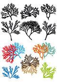 Korály útesy, vektorové sada